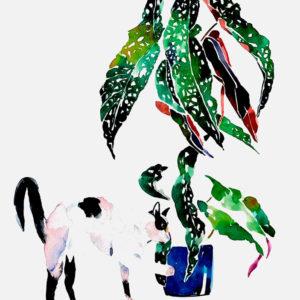Begonia y Conchita Peropero. Venta online de acuarelas originales