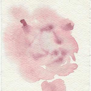Rosa. Venta online de acuarelas originales