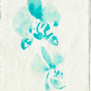 Orquídea. Venta online de acuarelas originales