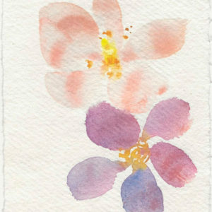 Rosas salvajes. Venta online de acuarelas originales