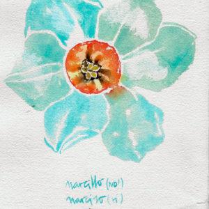 Narciso. Venta online de acuarelas originales