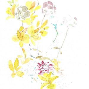 Flores amarillas. Venta online de acuarelas originales
