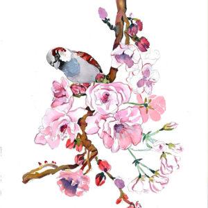 Sakura y gorrión. Venta online de acuarelas originales